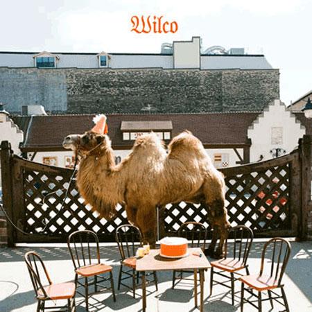 Se ve una W en las jorobas del camello